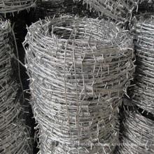 Hochwertiger Stacheldraht aus Metall