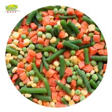 IQF Frozen Mixed Vegetable Carrot Green Pea Green Bean Sweet Corn Bulk