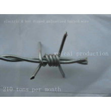 Electric & Hot Dipped Galvanized Barbed Wire