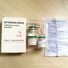 Ramadan Kareem GMP 0.25g/1.0g Ceftriaxone for Injection Ceftriaxone Injectable