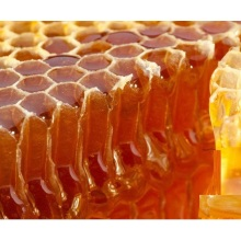 Raw amber Dateflower honey bulk sale