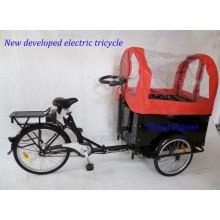 Triciclo eléctrico del rickshaw de la capacidad de la carga grande (FP-ERT003)