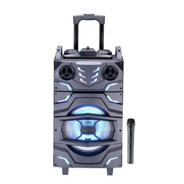 Speaker Trolley 12 inci Dengan Bluetooth