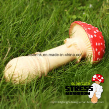 Idea Gift Funny Mushroom Vinyl Plastic Promotional Anti Vent Toy