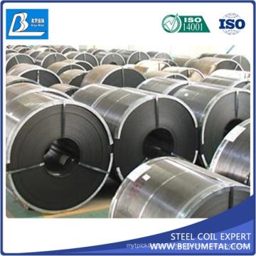 SAE1010 Ss400 Q235B HRC Hrp Hot Rolled Steel Golden Supplier