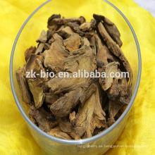 Polvo de alta calidad del extracto de la raíz del ruibarbo de la venta caliente