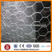 Hexagonal wire chicken iron nettings