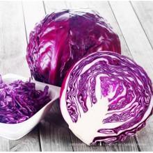 RC07 Сяньличживай круглый фиолетовый гибрид F1 семена капусты