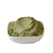 High  quality healthy organic  dehydrated celery powder  with best price