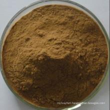 Brahmi Herbs Extract / Bacopa Monniera Extract Powder