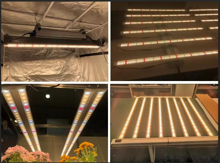 grow light for vegetables