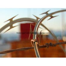 Hierro alambre/Concertina alambre de hierro de púas de la maquinilla de afeitar