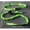 Hands Free Retractable Bungee Reflective Dog Leash