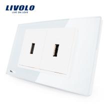 Fabricant Livolo US Prise Standard Verre En Cristal USB Prise Électrique Prise Murale Prise 110-220V VL-C392USB-81