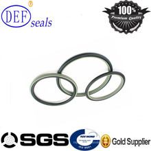 High Technology PTFE Rod Seal for Valve Industry