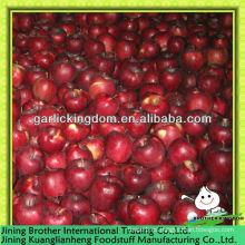 Huaniu apple precio bajo