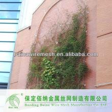 Hochwertiges Pflanzenkletternetz