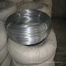 Elecric Galvanized Iron Wire for Sale (avec ISO et SGS)