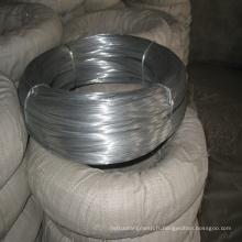 Elecric Galvanized Iron Wire for Sale (avec ISO et SGS)
