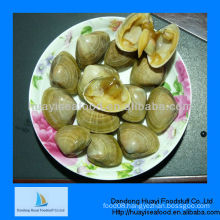fresh frozen clam new surf clam