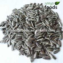 Sunflower seed sheller in chian