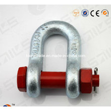Us Type Drop Forged Hot DIP Galvanized Bow Shackle D Shackle for Lifting (G2150)