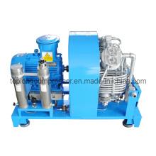 Компрессор сжатого воздуха высокого давления Компрессор для сжатого природного газа Компрессор для сжатого природного газа CNG Насос для наполнения CNG (Bx30CNG)