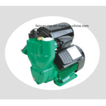 Automatic Cold&Hot Water Self-Priming Vortex Pressure Pumps