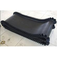 Nylon Nn250 Gummi-Förderband mit Dicke 10mm Breite 600mm bis 2400mm