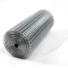 Suministro galvanizado de China de la tela de malla de alambre soldada con autógena