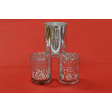 Sliver Glass Cup