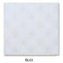 Decortive PVC Wand- oder Deckenplatte (BL03)