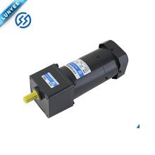 100v 110v 120v 220v 230v 240V small electric ac brake geared motor