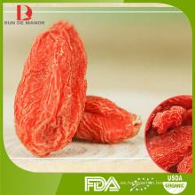 Especificación diferente de la baya / del wolfberry del goji de la alta calidad de la venta al por mayor CALIENTE de la VENTA