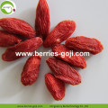 Fuente de la fábrica Fruit Natural Packing Bayas de Goji