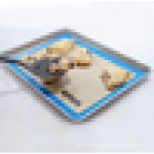 Alfombra antiadherente de silicona