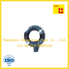 ISO ANSI Standard Andoizing Special Planetary Gear with Keyway