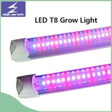 T8 Tube LED wachsen Licht