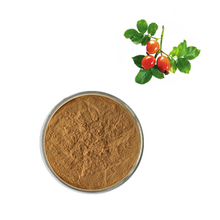 Rosehip Extract/Rose Hip Extract Powder 5%~10% VC