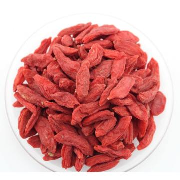 Non GMO Superfood Organic Goji Berries