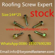 Dacromet Screw Roofing Bolts Bi-Metal Screw Self Drilling Screw