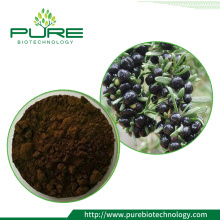 Anthocyanin 10% -40% polvo de extracto de Black Goji Berry