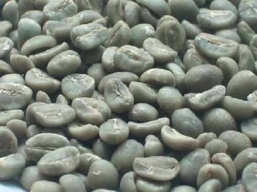 Arabica Raw Coffee Beans