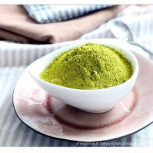 Poudre de thé vert Matcha biologique de l'Union européenne règlement