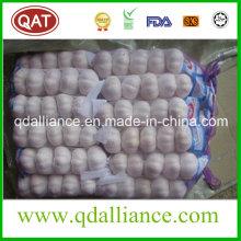 Fresh Pure White Garlic From 2016 New Crop