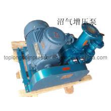 Compresseur de gaz Marsh Compresseur de méthane Compresseur de biogaz (série TDS)
