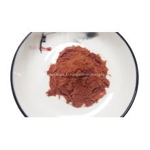 Extrait naturel d'écorce de racine de mimosa hostilis en poudre