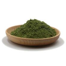 polvo de pasto de trigo orgánico