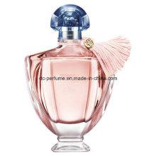 Marke Parfüm für gutes Schauen auf heißem Verkauf