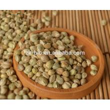 Venta caliente semillas de cáñamo orgánico